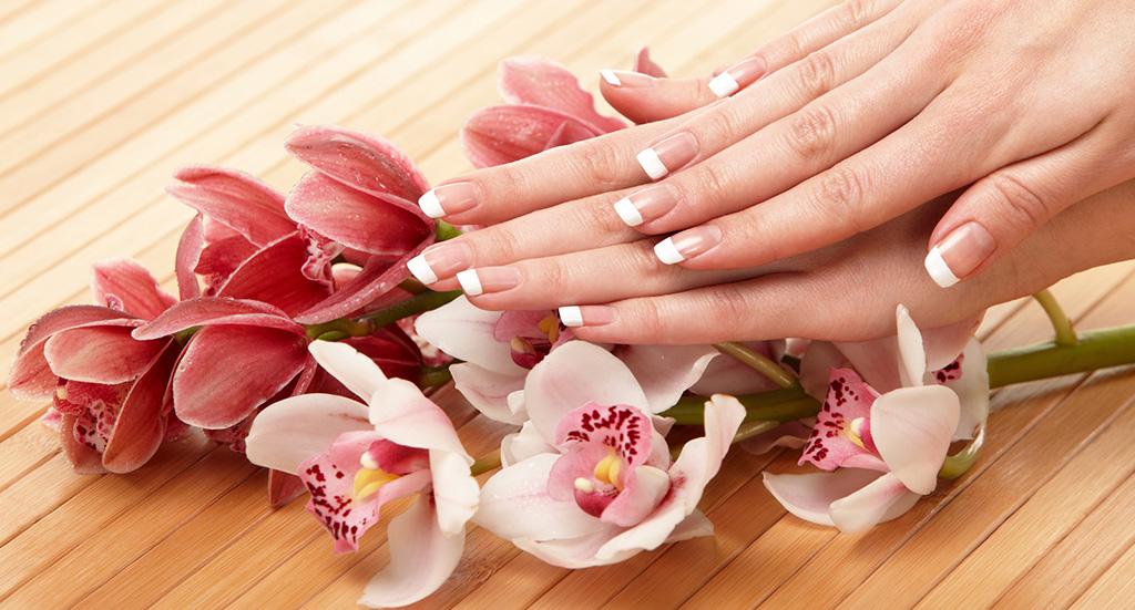 Elegant Nails Spa Salon
