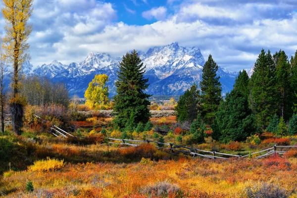 Grand Teton National Park Autumn