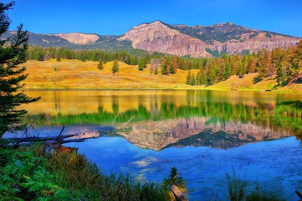 Yellowstone National Park Fine Art