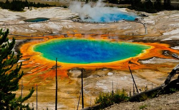 Fine Art Nature Yellowstone National Park