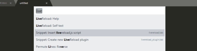 Adding the LiveReload script to one of your files.
