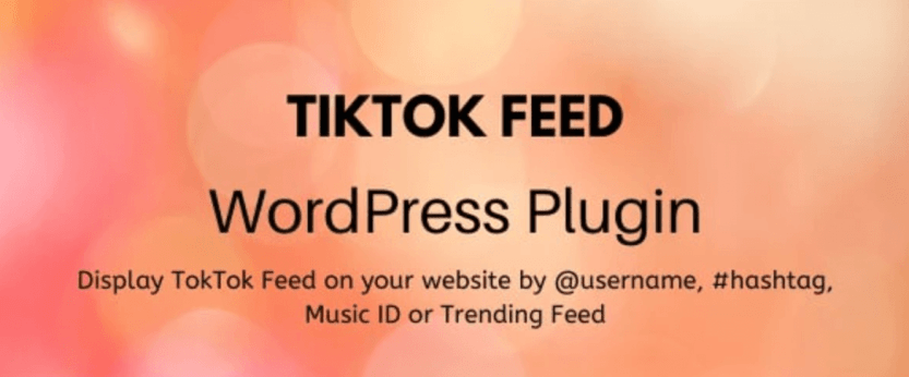 The TikTok WordPress Plugin.