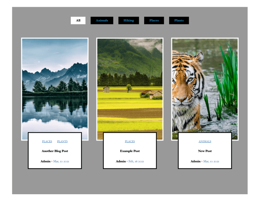 A custom post category filter created with an ajax category filter wordpress plugin