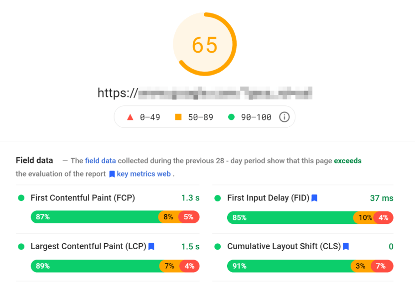 A PageSpeed Insights results screen