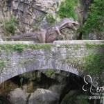 Ricordi e dinosauri dal passato