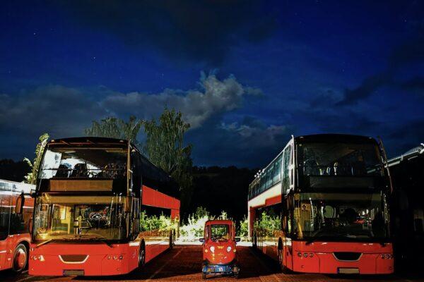 Elektrofrosch-Quad-Bus-Damaske