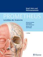 Prometheus Lernatlas Anatomie
