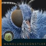 Wandlungskünstler – Die geheime Erfolgsgeschichte der Insekten