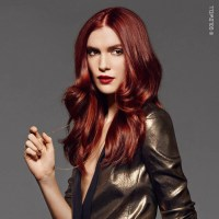 Goldwell RED collection womens hair colour for 2017