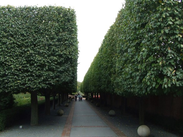 Architectural Functions of Landscapes - trees