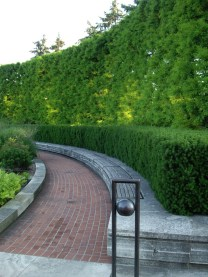 Architectural Functions of Landscapes - Hedge Wall