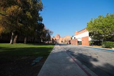 UCLA-38