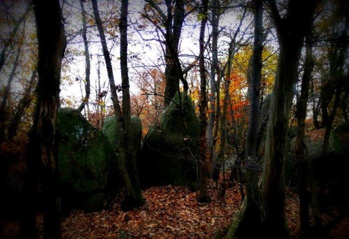 Il bosco segreto delle masche, le streghe che abitano la valle Susa