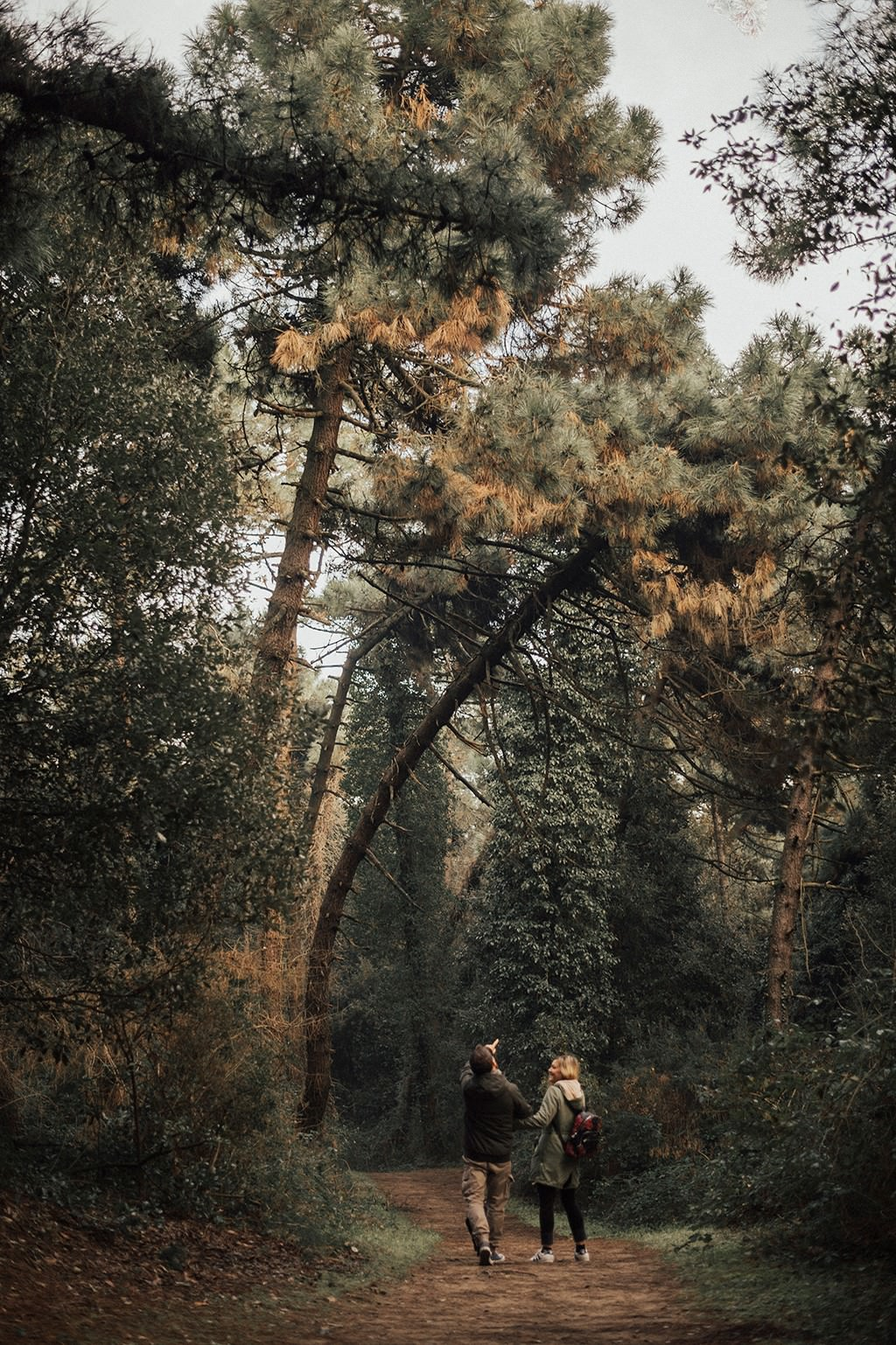 couple walking in a beautiful forest