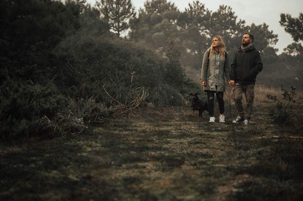 Couple with a dog exploring a forest between bushes
