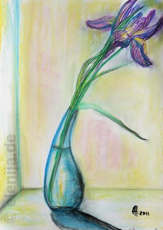 Iris, von Elenija
