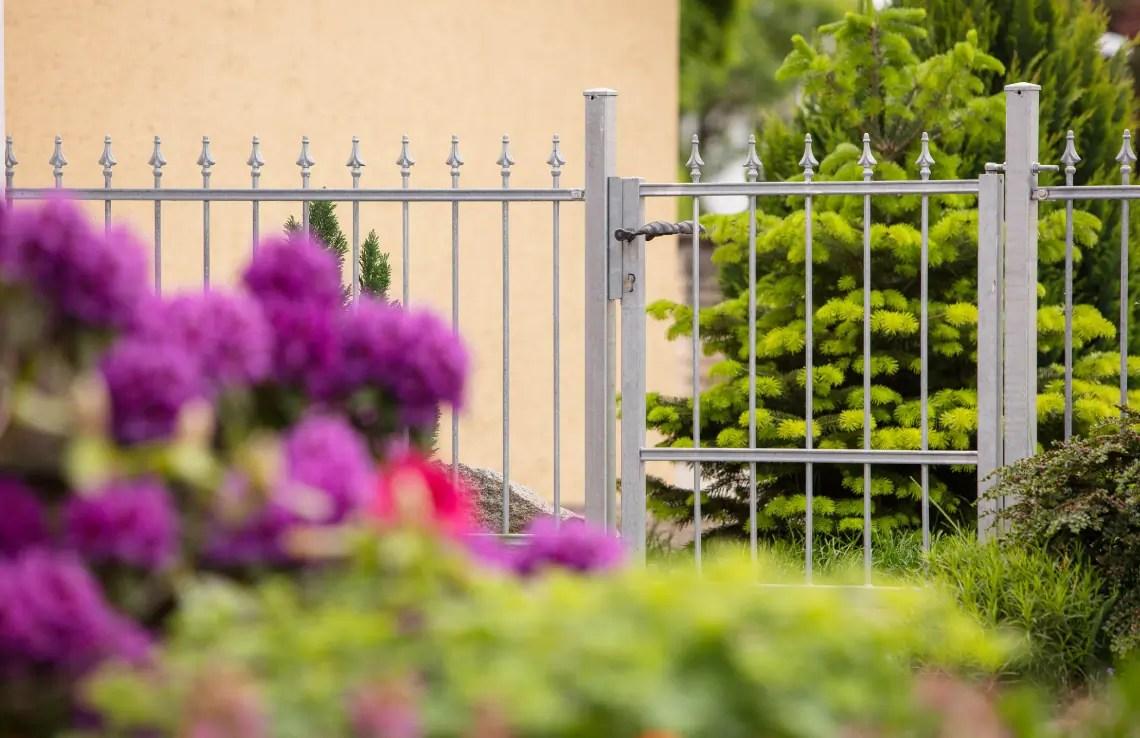 Gartentor Ravenna - feuerverzinkt - Pinie