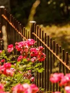 Moderner Zaun Padua unbeschichtet