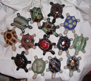 regroupement de tortues de salon