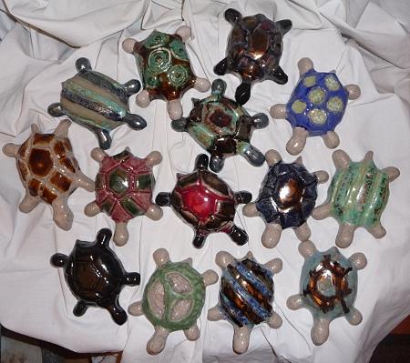 regroupement de tortues de salon