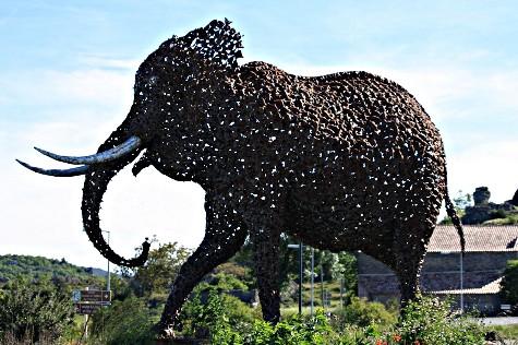 Elephant du Caylar_