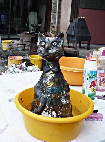 chat raku 5 - premier bain !