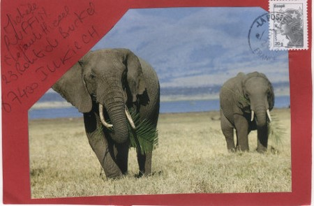 elephant_2014_01 (28)