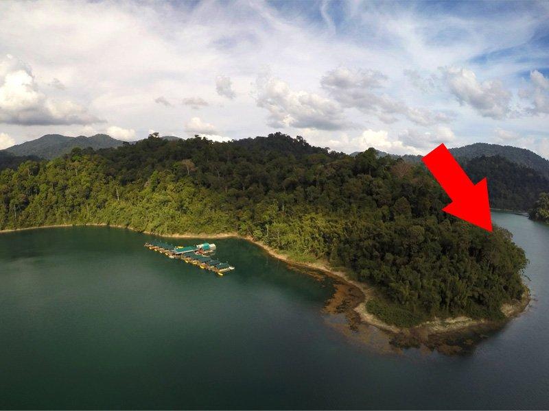 rainforest_camp