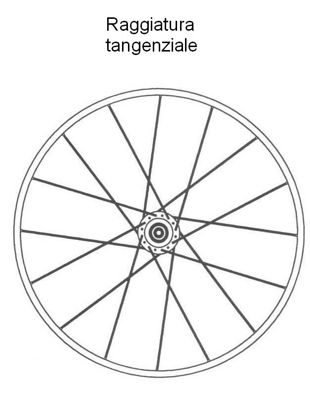 Le forze che agiscono sulle ruote e tipi di raggiatura