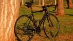 3400 Rose X-lite team 4400 305