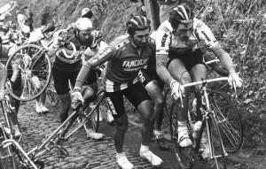 3440 Francesco Moser 17