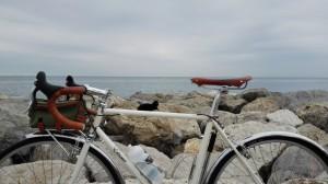 6255 Elessar bicycle