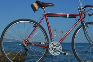 6494 Peugeot Anjou Passepartout 38