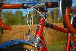 6788 Elessar bicycle 310