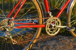 6789 Elessar bicycle 135