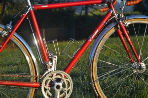 6890 Elessar bicycle 243