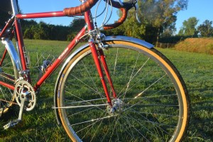 6903 Elessar bicycle 260