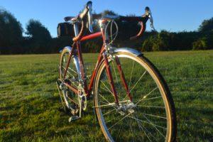 6925 Elessar bicycle 291