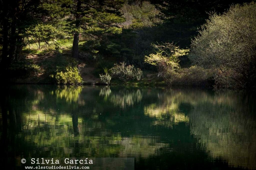 curso fotografía y naturaleza, Barranca, Sierra de Guadarrama, foto+natura