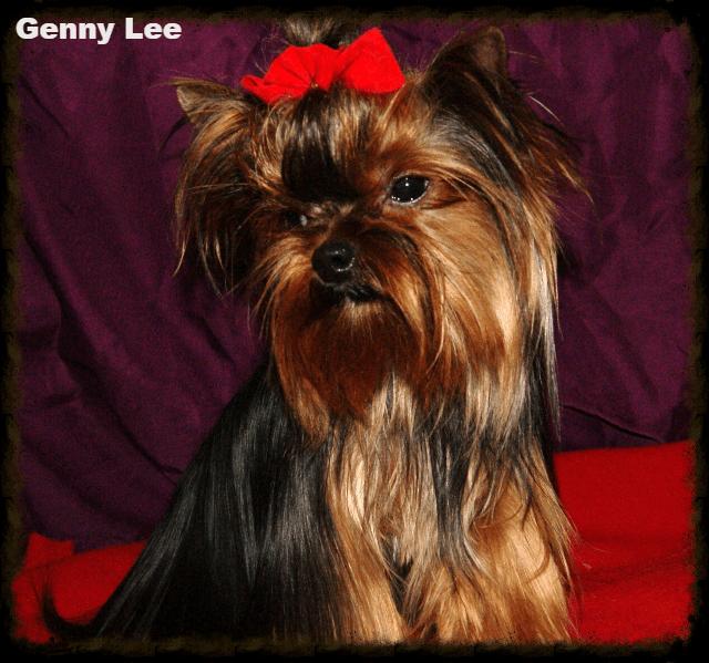 Genny Lee