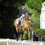 CONCOURS DE DRESSAGE – MASSA HORSES : Un concours sous le signe de la réussite !