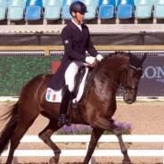 Championnat d'Europe de Dressage : Les chevaux Massa brillent à Goteborg