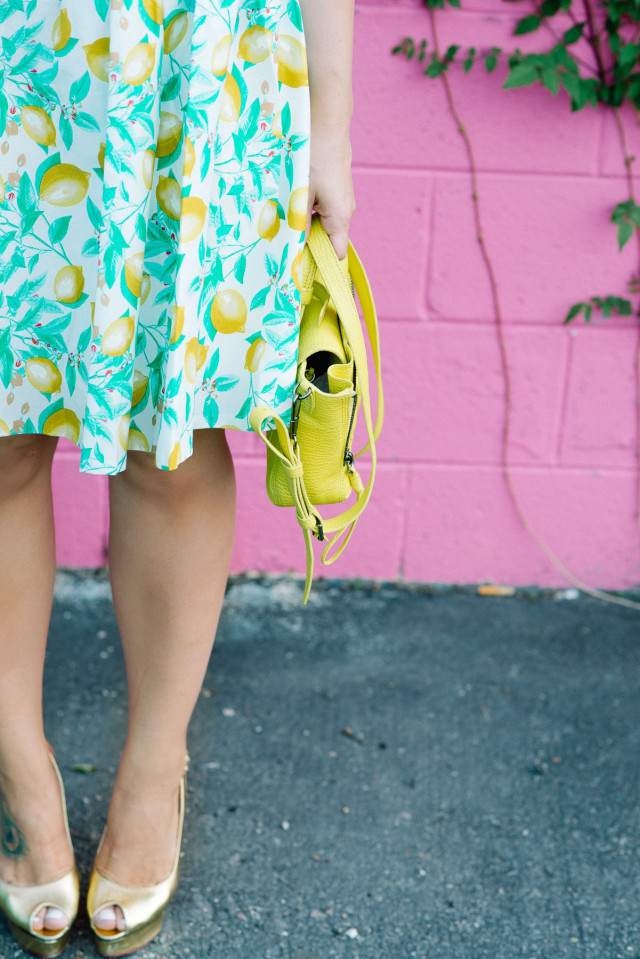 Lemon Print Fabric