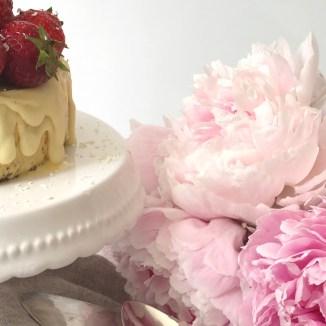 Hier findet ihr ein Rezept für einen cremige Vanille Erdbeereistorte auf www.elfenkindberlin.de