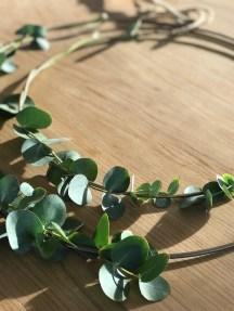 Eukalyptuskranz selbermachen