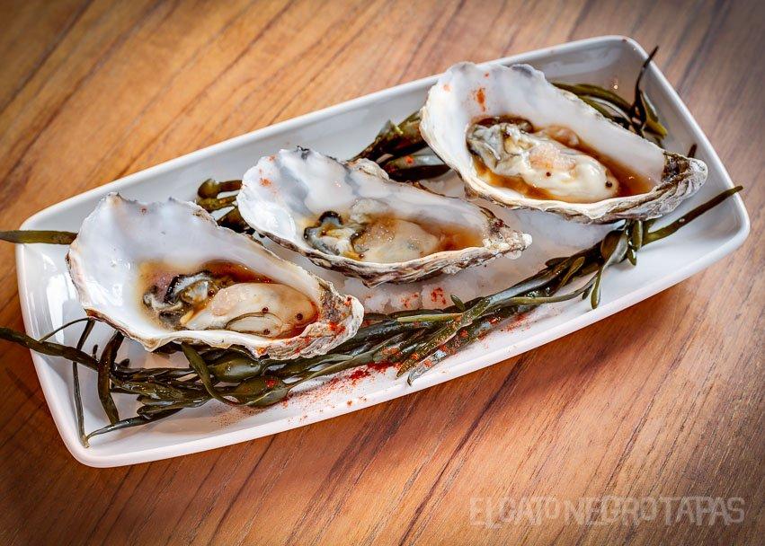 egn_nye_oysters