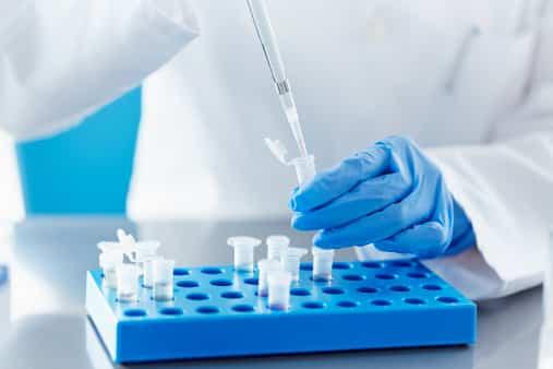 Identifican un gen que causa un retraso grave en el desarrollo neurológico