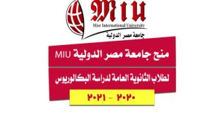 التقديم في جامعه مصر الدولية