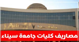 مصاريف جامعة سيناء الخاصة