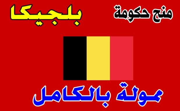 منحة الحكومة البلجيكية 2021